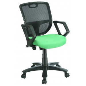 Low Back Mesh Back Chair - Mesh1